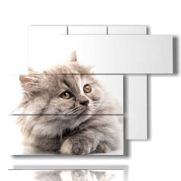 panneau avec chat gris