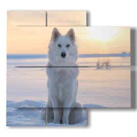 Tableaux modernes chien célèbre sur la neige au coucher du soleil