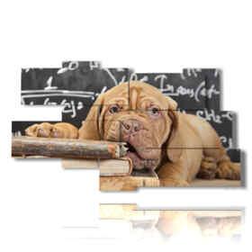Image moderne d'un chercheur de chien