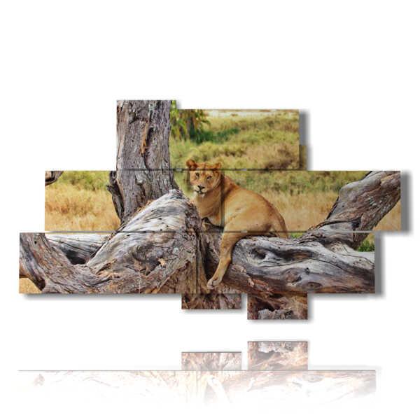 cuadros de león en relajarse