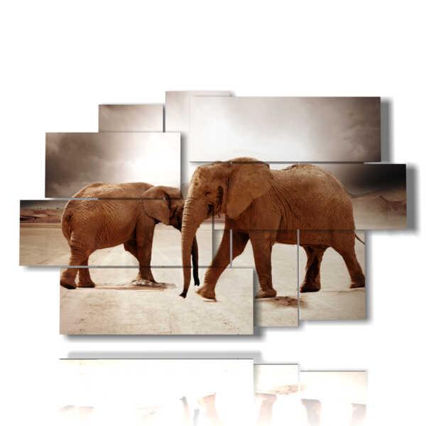 brun tableaux éléphants