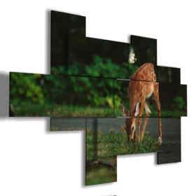 il cervo nei quadri con animali di montagna