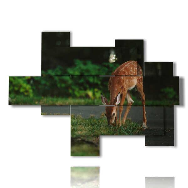 los ciervos en las cuadros con animales de montaña