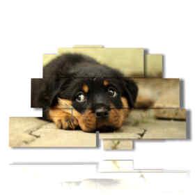 Tableaux modernes de chiens peints en attendant le maître