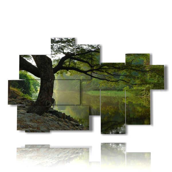 alberi autunnali quadri vicino al fiume
