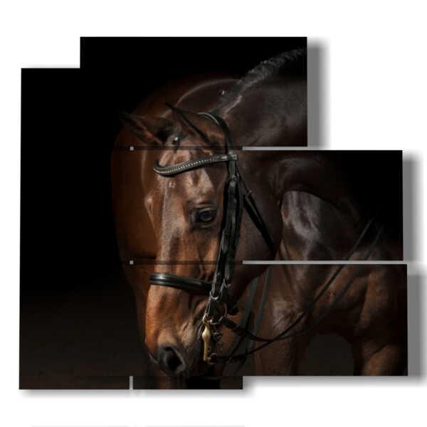 cuadro con el caballo marrón solitaria