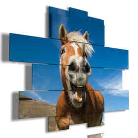 cuadros modernos con caballos de risa