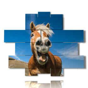quadri moderni con cavalli che ridono