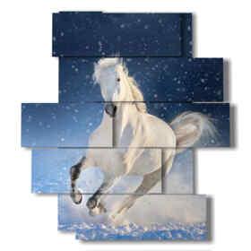 Peinture moderne avec cheval blanc stellaire