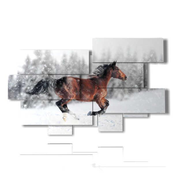 tableaux à cheval pendant la course dans la neige