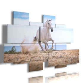 quadro in un dipinto con cavallo bianco nella spiaggia