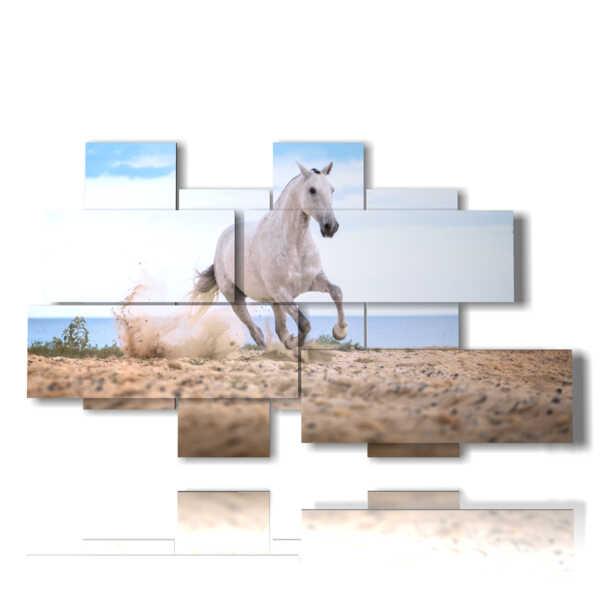 image dans un tableau avec un cheval blanc sur la plage