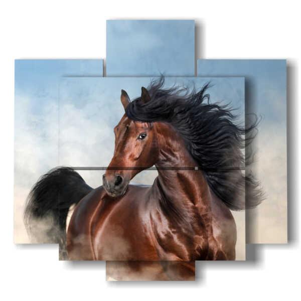 caballos cuadros modernos en el primer plano