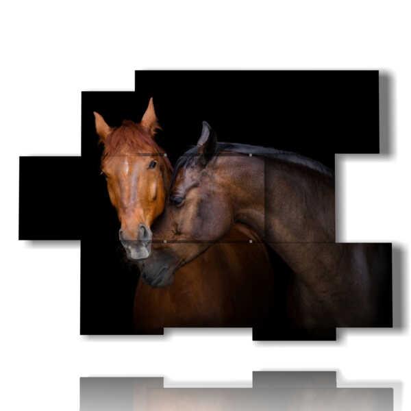photo avec les chevaux qui aiment