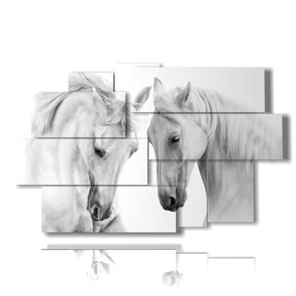 photos de célèbres chevaux voisins à proximité