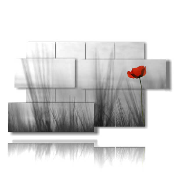 quadri di natura in fiore