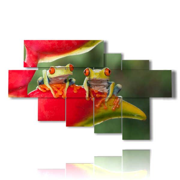 quadri sugli animali con due rane sedute in un fior