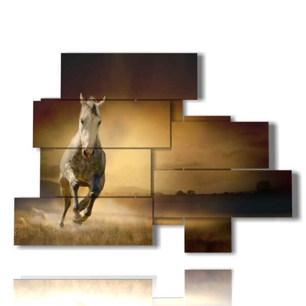quadro di dipinto a cavallo in scoperta