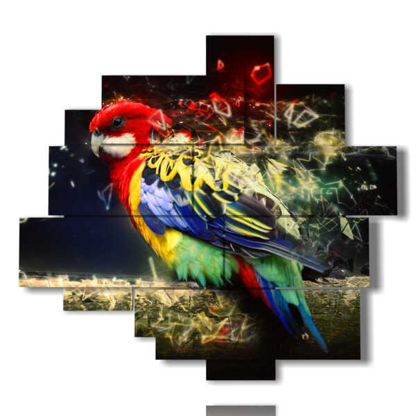 paintings on canvas parrots from magic feathers