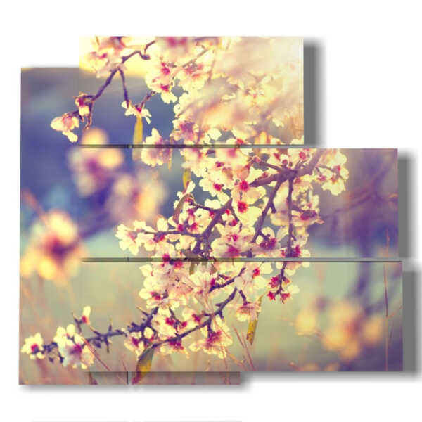 pictures of flowering trees