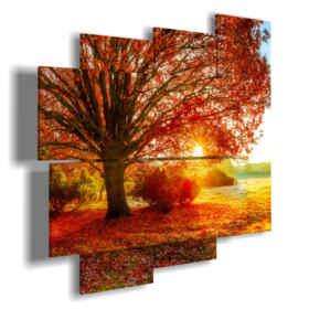 quadri alberi colorati al tramonto