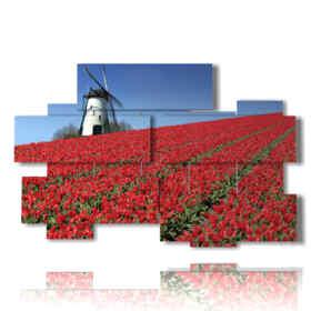 quadro con foto amsterdam e i tulipani