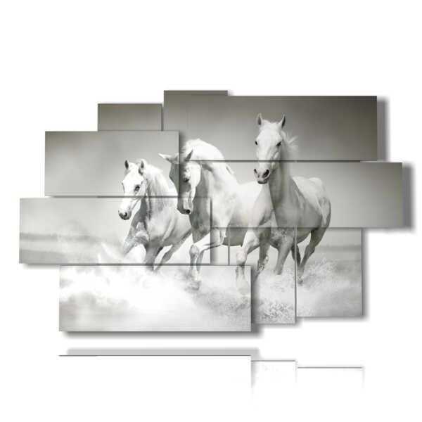 quadro cavalli sulla spiaggia che giocano in acqua