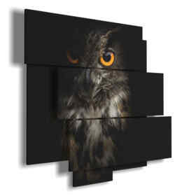famous paintings with birds Owl