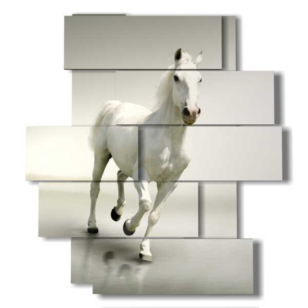 tableaux de cheval blanc sur blanc