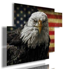 cuadros famosas de águila pájaros