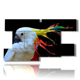 quadro pappagallo pittura di colori