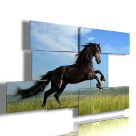 in jumping horse paintings