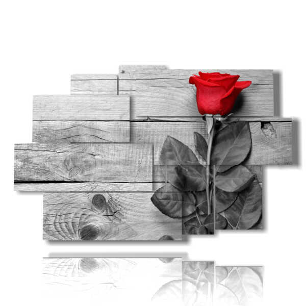 frame with red rose surrounded by gray