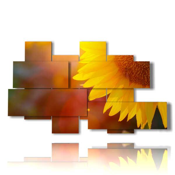 tableaux avec des fleurs embrassée par le soleil