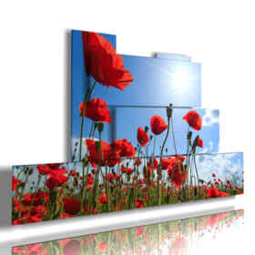 picture with photos of red poppies in the blue sky