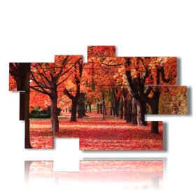 foto di autunno caldo rosso