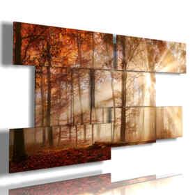 tableaux avec des photos des châtaignes d'automne entre la lumière