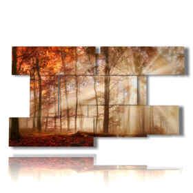 Tableau moderne avec des photos de châtaigne d'automne entre la lumière