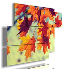 Bild mit Fotos von Herbst mit orange Blättern