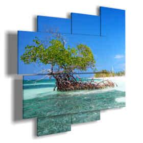cuadro con imágenes cuba mar