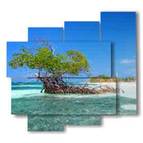 quadro con foto cuba mare