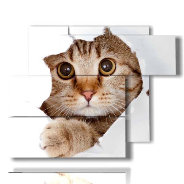 cuadros de los gatos modernos que juegan