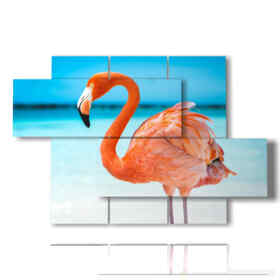 Modern pictures of beach birds