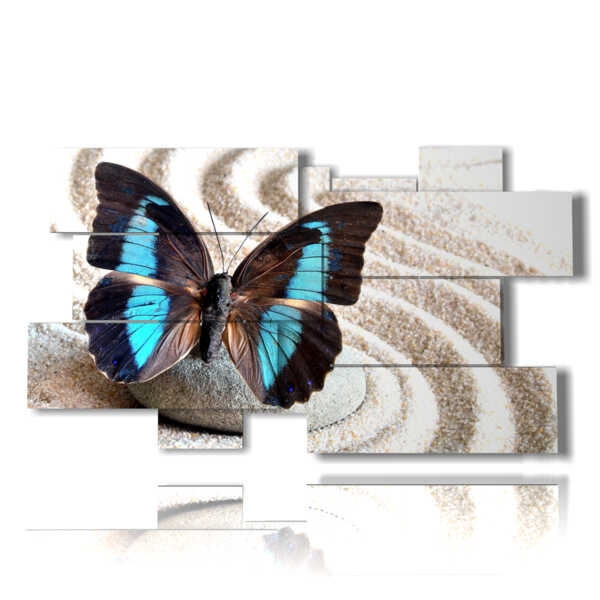 of blue butterfly painting in a white sand