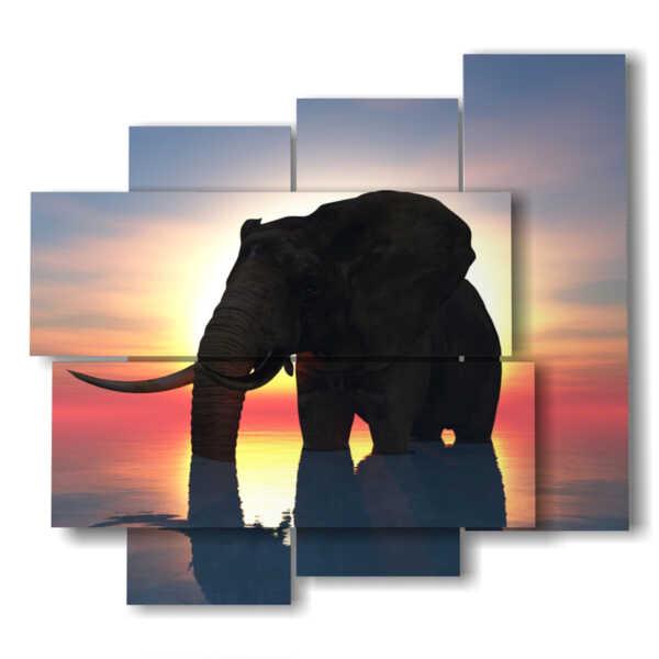 cuadros de elefantes a la puesta del sol abstracta