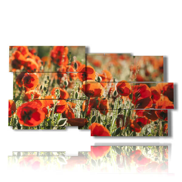 picture painted poppies in the field
