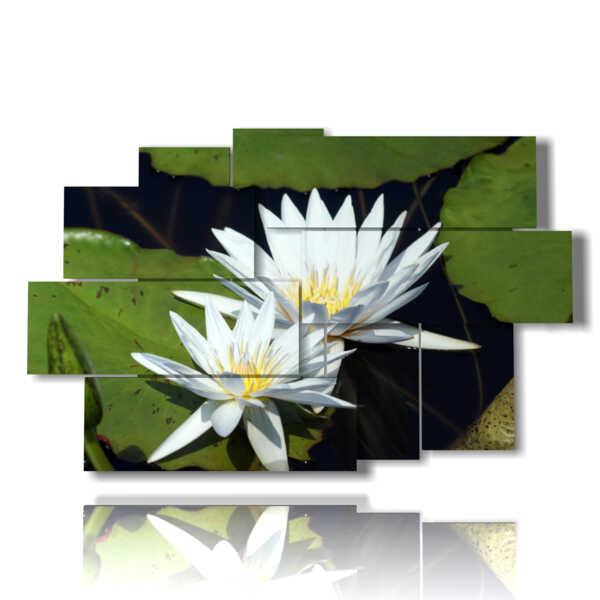 tableaux avec des fleurs blanches nichées dans les feuilles vertes