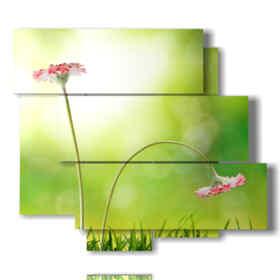 quadro rappresentante una foto fiori primavera inoltrata