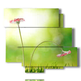 picture representing a picture spring flowers sent