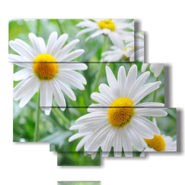 painting with pictures daisy flowers